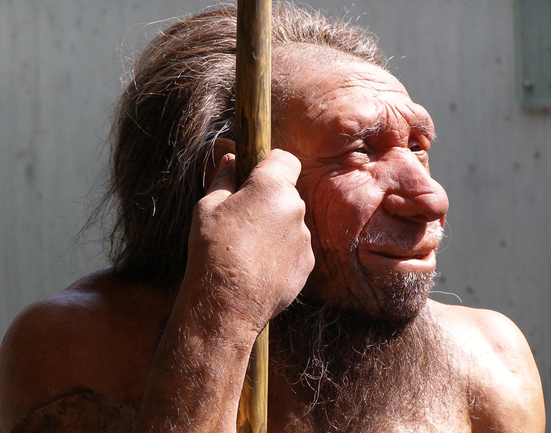 Свердловские ученые обнаружили вБашкирии кости животных возрастом неменее 40 тыс. лет