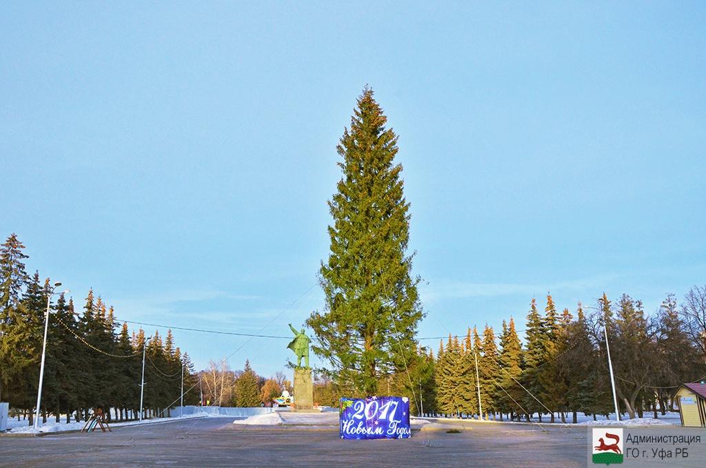 ВУфе возникла еще одна 30-метровая елка